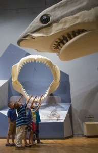 Kids with Megalodon