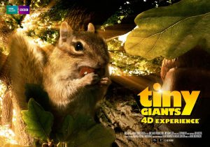 Tiny Giants 4D Experience, 4D Theater