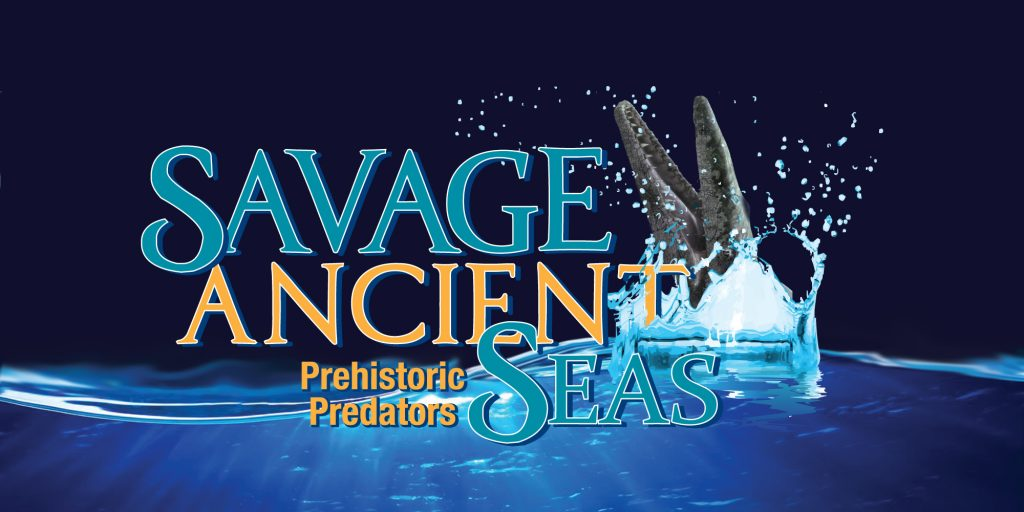 Savage Ancient Seas, fossils, Columbia Things to do