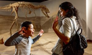 South Carolina State Museum, Dinosuar, South Carolina, Family, Things to Do, Columbi