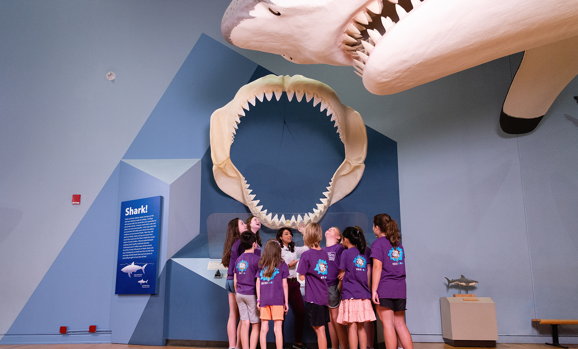 Megalodon, South Carolina State Museum, Field Trips