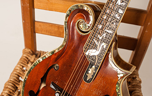 Bluegrass Night, Columbia, Things To Do