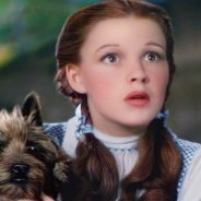 See The Wizard of Oz 4D Experience™ at the State Museum